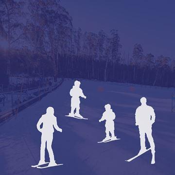 Picture of Ski 4 Person Private Lesson