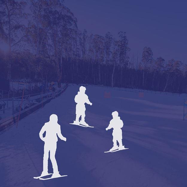 Picture of Ski 3 Person Private Lesson