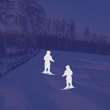 Picture of Ski 2 Person Private Lesson